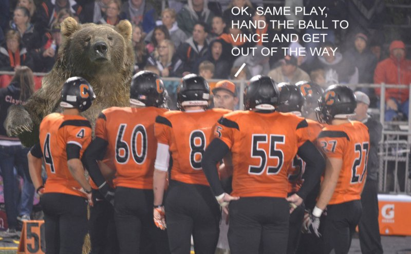 Click image for larger version.  Name:Bear-in-huddle.jpg Views:4 Size:76.0 KB ID:22212