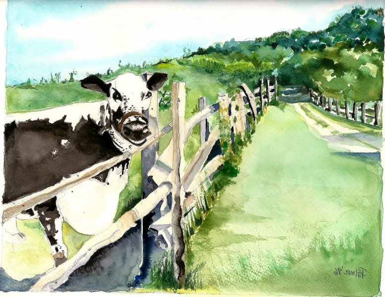 Click image for larger version.  Name:Bethpage Cow.jpg Views:9 Size:131.6 KB ID:15701