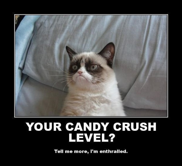 Click image for larger version.  Name:candy-crush-Grumpy-Cat.jpg Views:3 Size:52.9 KB ID:11323