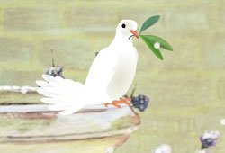 Click image for larger version.  Name:dove-of-peace3.jpg Views:122 Size:8.6 KB ID:12955