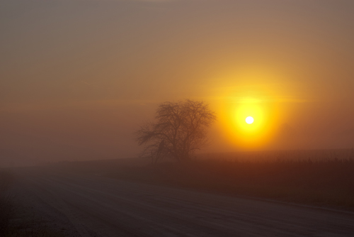 Click image for larger version.  Name:Foffy Sunrise.jpg Views:80 Size:82.9 KB ID:3646