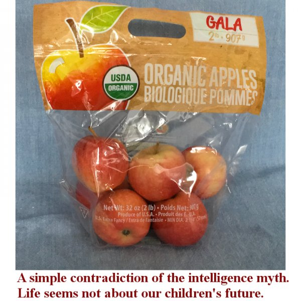 Click image for larger version.  Name:OrgannicApples.jpg Views:2 Size:75.0 KB ID:20957