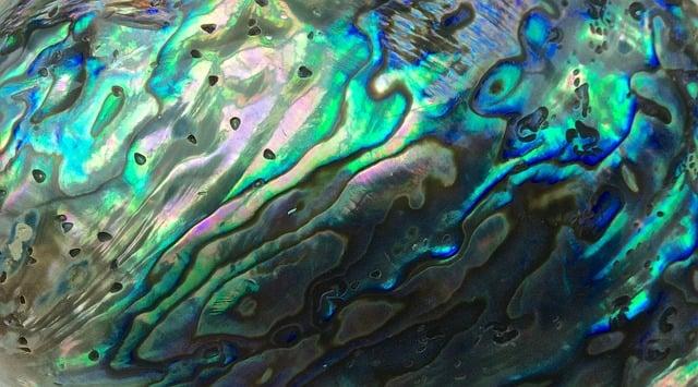 pearl poem image only.jpg