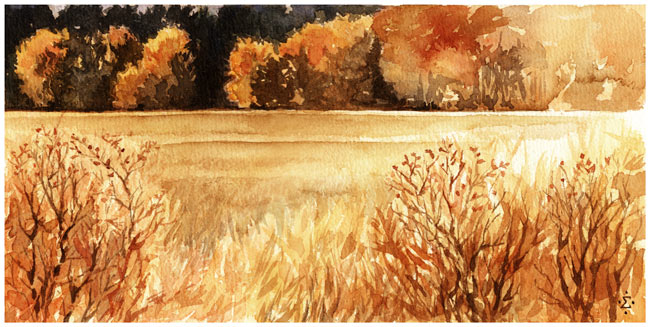 Click image for larger version.  Name:Saltese_Autumn_2004.jpg Views:13 Size:79.7 KB ID:15513