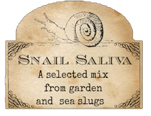 Click image for larger version.  Name:snail.JPG Views:3 Size:40.2 KB ID:15824