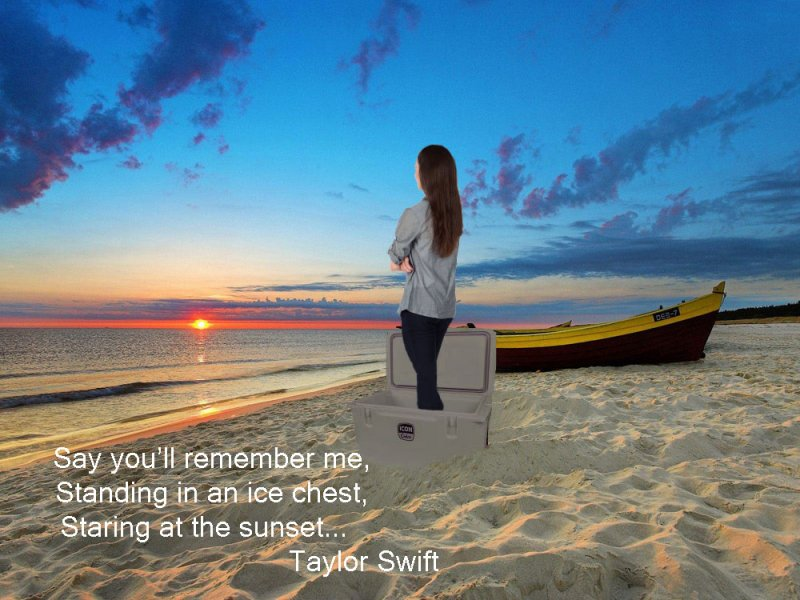 Click image for larger version.  Name:Taylor-Swift.jpg Views:1 Size:97.9 KB ID:22514