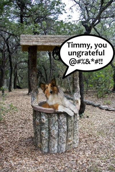 Click image for larger version.  Name:Timmy.jpg Views:3 Size:103.9 KB ID:22211