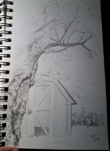 Click image for larger version.  Name:Tree sketch.jpg Views:6 Size:39.4 KB ID:25441