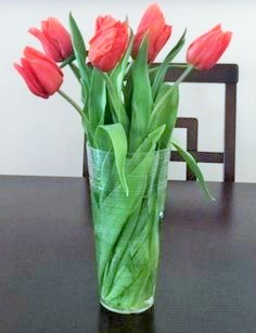 Click image for larger version.  Name:tulips.JPG Views:41 Size:36.1 KB ID:25669